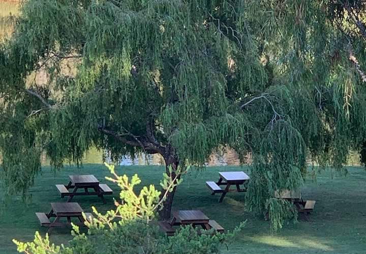 Top picnic spot in Denmark